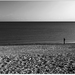 samota
