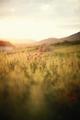 Vidiecky západ slnka
