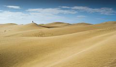 Dune ...