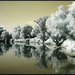 Rieka Morava [IR]