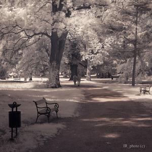 Zámocký park [IR]