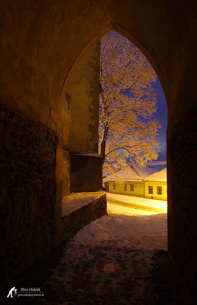 Zimná gotika