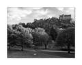 In Edinburgh II