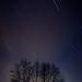 ...stars...