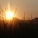 zapad slnka