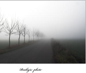 Moja cesta