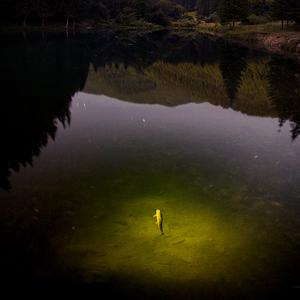 Aj ryby majú svoje sny...
