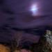 Za svitu mesiaca