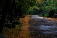 Jeseň v ZOO