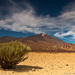 ... Teide National Park ...