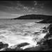 ...Galley Head...