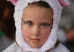 Smutný zajačik
