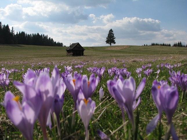 Jar na Horehroní
