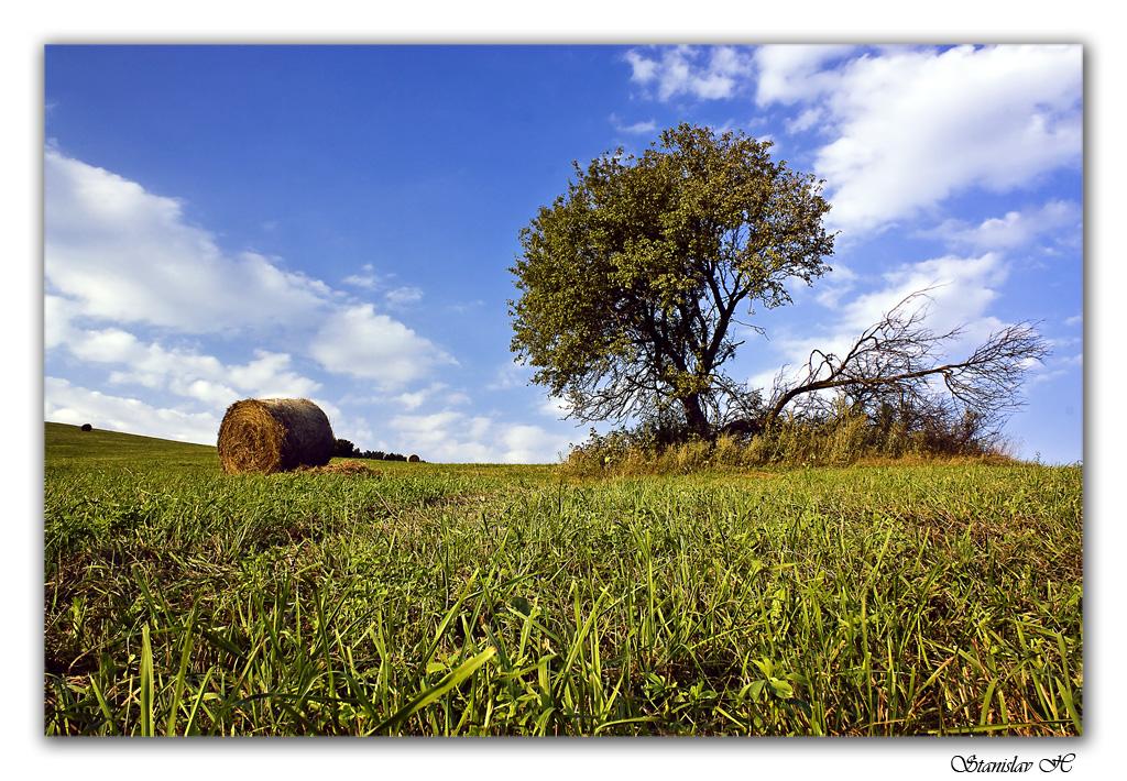 strom a rolka