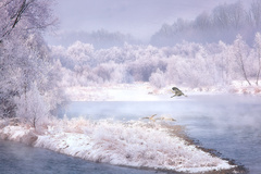 v kráľovstve mrazu