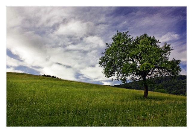 strom II