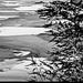Mrazivý Dunaj