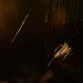 V súhvezdí Pavúka II...