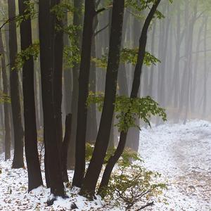 Jeseň - zima