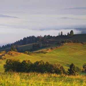 Oravské pohľady V.