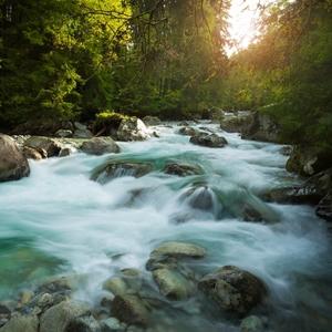 Potok v Kôprovej doline