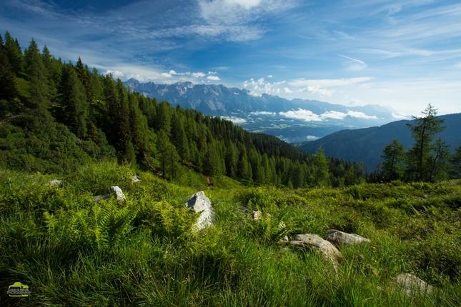 Leto v Alpách