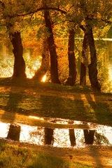 Pri jesennej rieke.