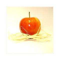 ... apple gift ...