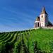 Kostolik nad vinicami...