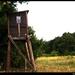 polovnicka veža