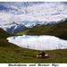 Bernské Alpy a Bachalpsee