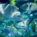 Karibsky podmorsky svet