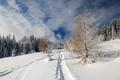 Spomienka na zimu II