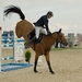 Dvojnohý kôň
