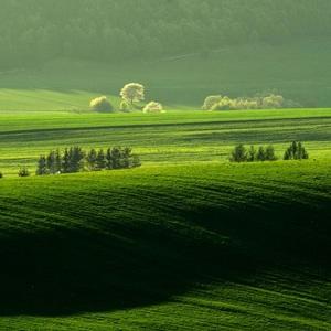 Jarná krajinka..