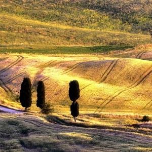 Toskánska krajinka..