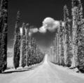 Cestička infra krajinkou