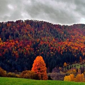Jeseň na Horehroní..