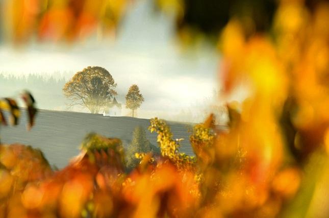 Jedno jesenné ráno..