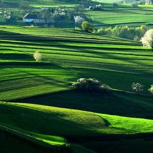 Údolie rozkviktnutých stromov..
