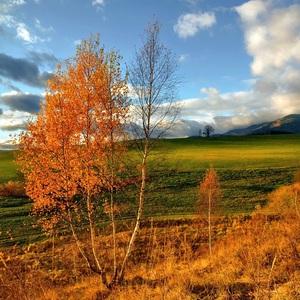 Jesenné obrázky..