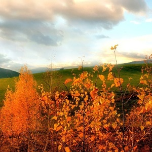 Spomienky na jeseň