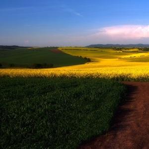 Krajina Južnej Moravy