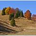 Jesenná maliarova paleta