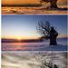 Metamorfózy zimy