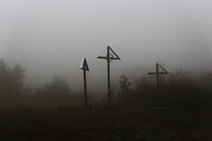 V hmle