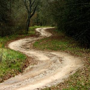 Cesta  života