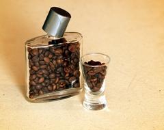 Ploskačka kávy