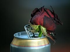 Smädná ruža