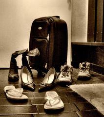 Cestovatelia